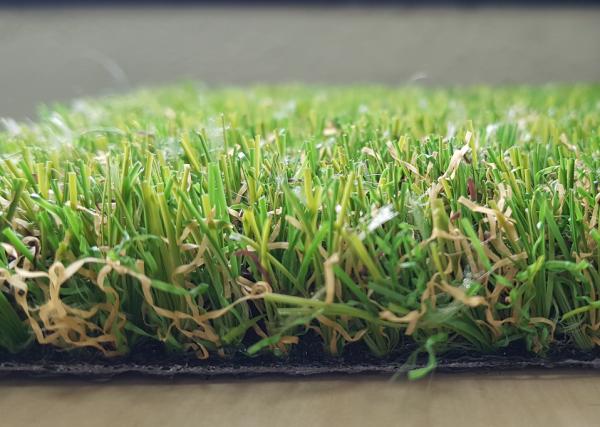 compograss